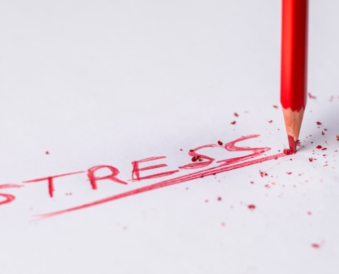 Formation-alive-school-savoir-gerer-son-stress