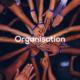 alive-school-formation-organisation